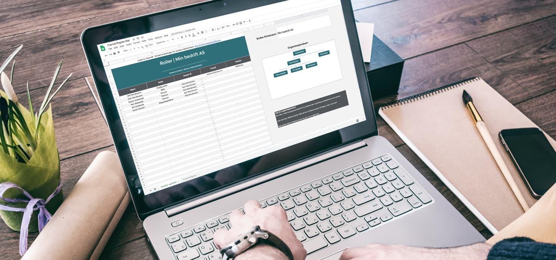 Fremdriftsplan mal med rolleoversikt og organisasjonskart